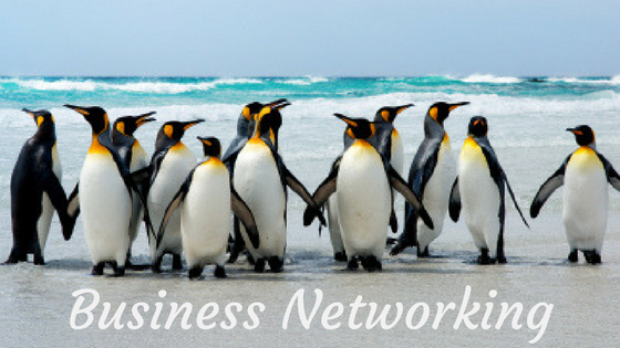 Business Networking Course